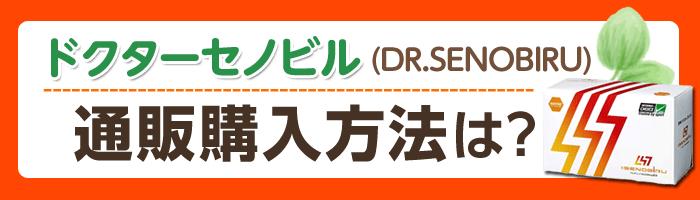ドクターセノビル(DR.SENOBIRU)の通販購入法